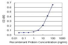 Anti-APLN Mouse Monoclonal Antibody (Biotin)