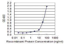 Anti-HMGB1 Mouse Monoclonal Antibody (Biotin)