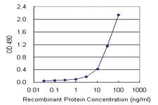 Anti-RETN Mouse Monoclonal Antibody (Biotin)