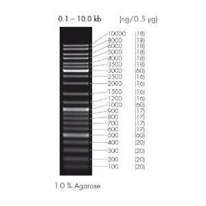 DNA ladder mix, peqGOLD