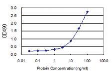 Anti-FEM1A Polyclonal Antibody Pair