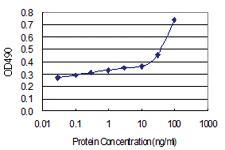Anti-FCN1 Polyclonal Antibody Pair